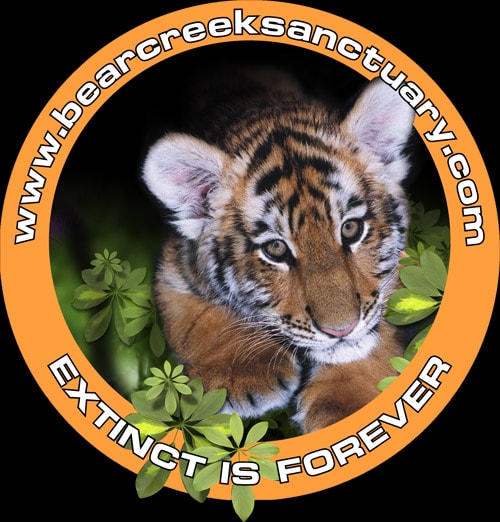 BEAR CREEK EXOTIC ANIMAL SANCTUARY